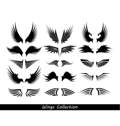 wings collection set of wings vector image