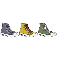 Color sneakers vector image