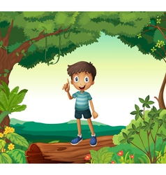 A boy standing on wood in nature vector image vector image