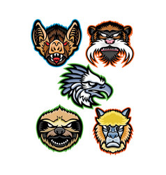 amazon wildlife animals mascot collection series vector image