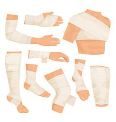 Bandaged body parts vector