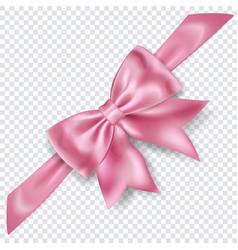 Beautiful bow with diagonally ribbon vector