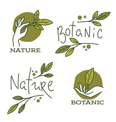 doodle organic leaves hand and lettering vector image