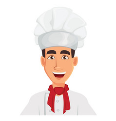 face expression of chef man happy vector image