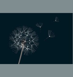 Flower dandelion vector