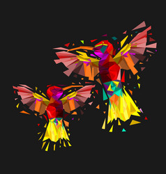 isolated low poly colorful couple hummingbird with vector image