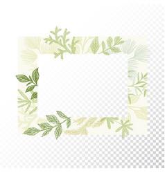 rectangular floral frame ornament vector image