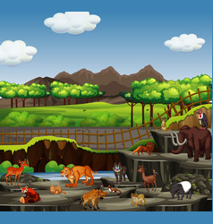 scene with many animals in open zoo vector image