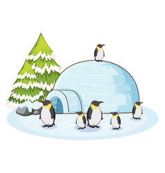 Scene with penguins and igloo vector