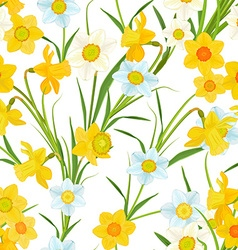 Seamless texture with blossom of daffodils vector