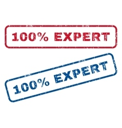 100 percent expert rubber stamps vector