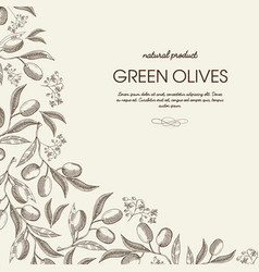abstract vintage natural poster vector image