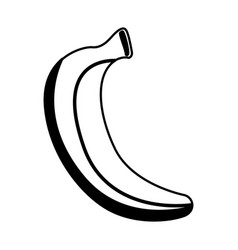 banana fresh fruit icon vector image