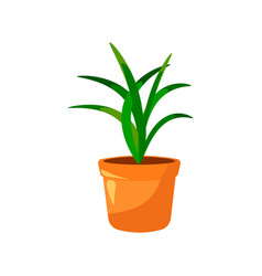cartoon green house plants in pots set leaf and vector image