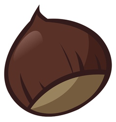 Chestnut vector