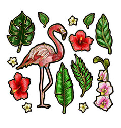 flamingo and flowers embroidery patches vector image