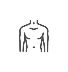 Male torso line icon vector