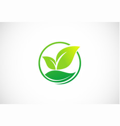 Organic green leaf nature logo vector