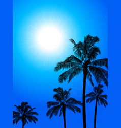 palm trees silhouette over blue sunny sky vector image