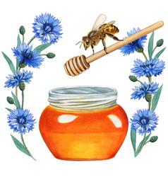 Watercolor honey jar with spoon bee vector