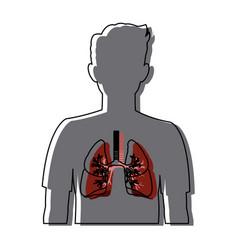 Human silhouette respiratory system body anatomy vector