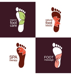 Feet with leaves and flowers vector image