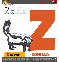 Letter z from alphabet with cartoon zorilla vector
