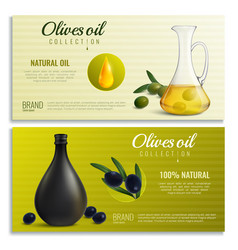 realistic olives oil banners vector image
