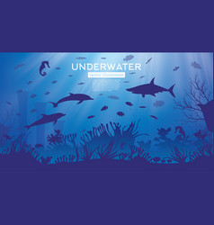 Underwater sea or ocean background with seaweed vector