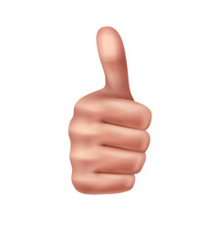 gesture thumbs up vector image