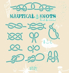 Nautical knots vector image