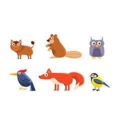 collection wild forest animals boar beaver vector image