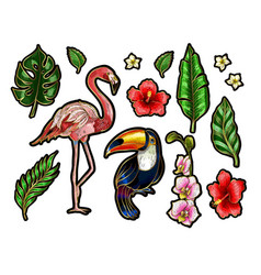 flamingo toucan and flowers embroidery vector image