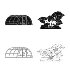 Greenhouse and plant symbol vector