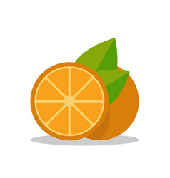 orange tropical fruit icon in flat simple style vector image