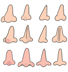 set of nose vector image
