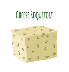 Roquefort cheese with mould dairy milky product vector