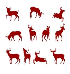 Various Silhouettes of Deer vector image