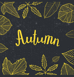 Autumn lettering hand drawn leaves around vector