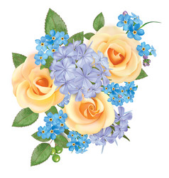 bouquet roses blue forget me not and phloxes vector image