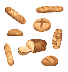 bread watercolour hand drawn painted vector image