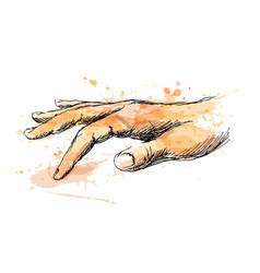 Colored sketch of touching hand vector