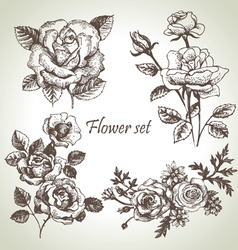 floral set hand drawn roses vector image