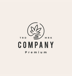 hemp cannabis care hipster vintage logo icon vector image