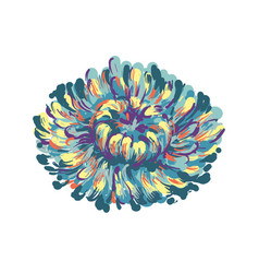 Luxurious decorative blue aster flower for vector