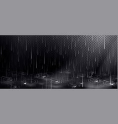 rain and puddle with circles from falling drops vector image