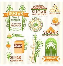 Sugar design elements vector