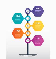 Vertical timeline infographics the development vector