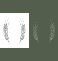 wheat bread ears cereal crop sketch line art style vector image