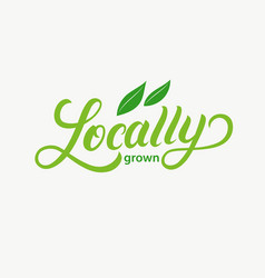 Locally grown hand written lettering logo vector